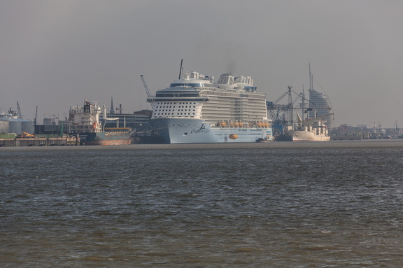 """""""Quantum of the Seas"""" Kreuzfahrtschiff an der Columbuskaje1.2.4.9 Die Kreuzliner,1.2.4 Öffentlichkeit_Intermedia,1.2 WebseitePixelboxx-Export"""